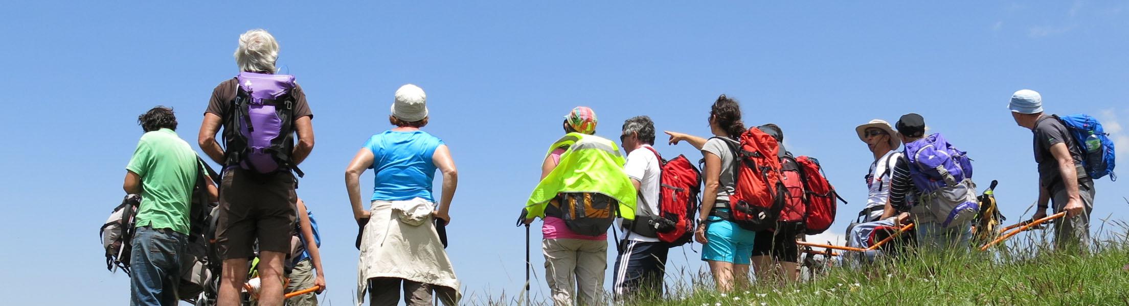 Eine Gruppe von Personen beim Wandern steht auf einer Wiese und schaut sich bei blauem Himmel die Gegend an. Eine Person im Rollstuhl wird mittels Tragegestell mitgenommen bei der Wanderung.