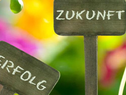 """Symbolfoto für das Gartenprojekt der BerfusQI: Man sieht 2 Setzkärtchen aus Holz mit den Worten """"Zukunft"""" und """"Erfolg"""" darauf."""